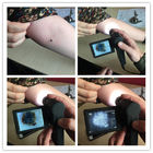 Portable Handheld Microscope Digital Skin Hair Inspector with Measurement Software in PC